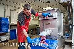 Man using meat grinder for baloney making in Frost…