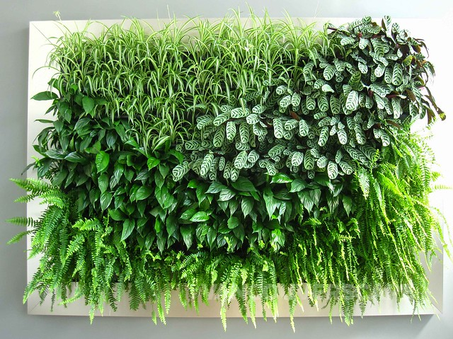 By Nature Design living wall-2