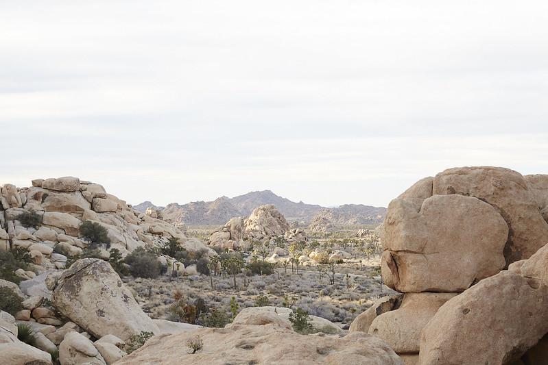 CA_Desert_0152