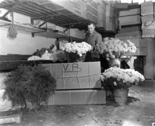 02-07-1951_09002 Bloemen voor de Sjah