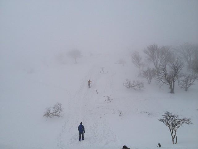 藤原岳 山頂直下の直登 ホワイトアウト