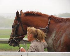 Suffolk Downs' Last Day, October 4, 2014