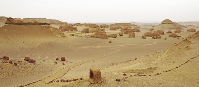 Wadi2-31