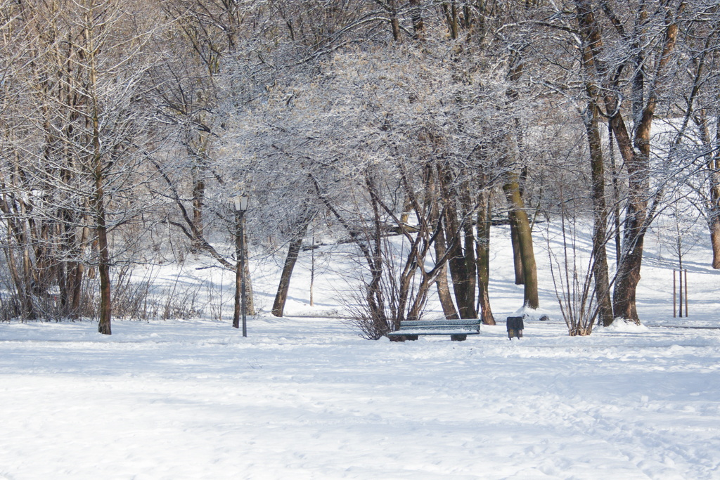 Luitpoldpark covered in snow