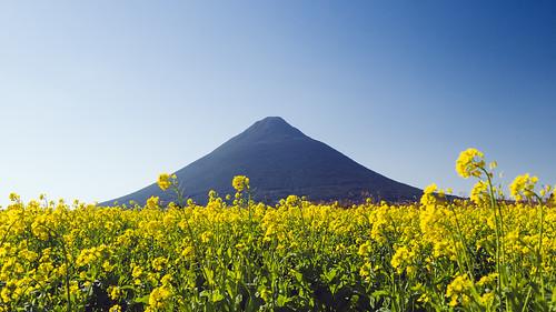 japan kagoshima panasonic 日本 ibusuki 鹿児島 kaimon 指宿 開聞岳 gx7 西大山 nishioyama 14140ii