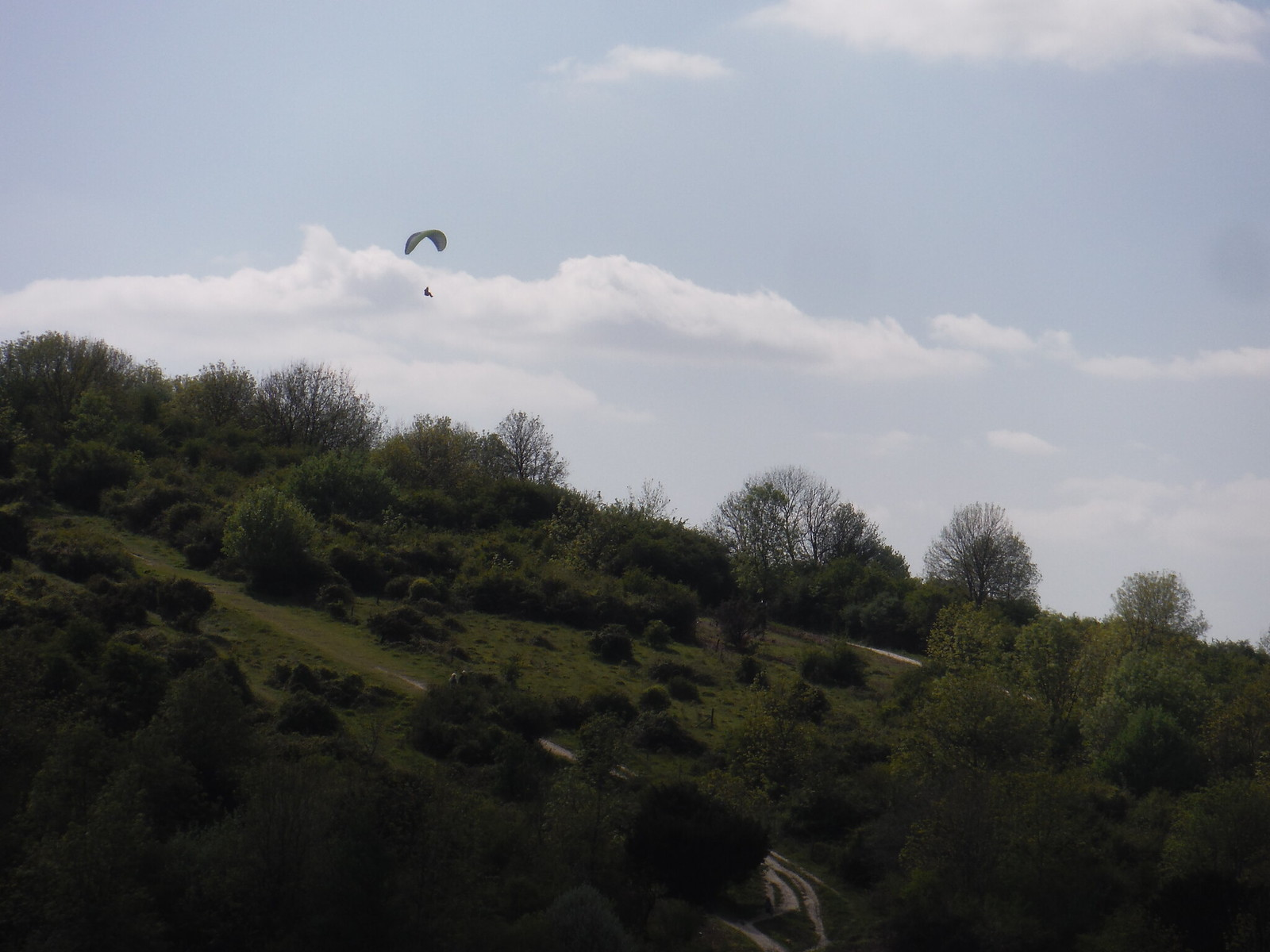 Glider above Round Down Hill SWC Walk Rowlands Castle Circular - Extension