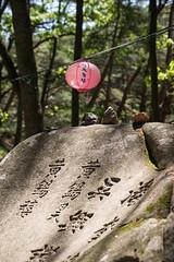 Buddha's Birthday South Korea