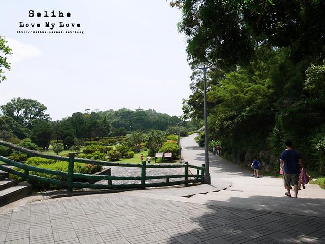 陽明山踏青一日遊景點 (1)