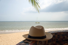 The Hat, the palm leaf, the beach, the ocean and t…