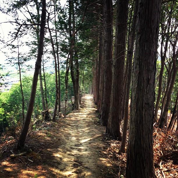 Ridge way.