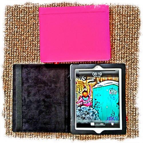 Goji iPad Case