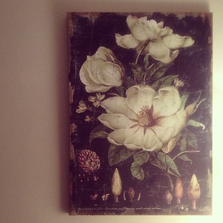 #magnolia wall painting I acquired today. I love it!  #flowers