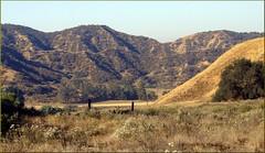 Panorama, Live Oak Canyon 6-16-13a