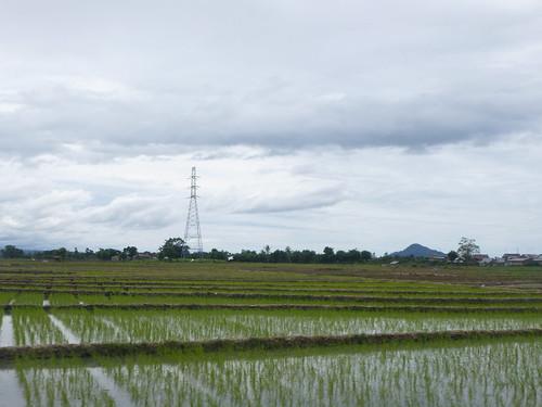 Makassar-Bira-Minivan (100)