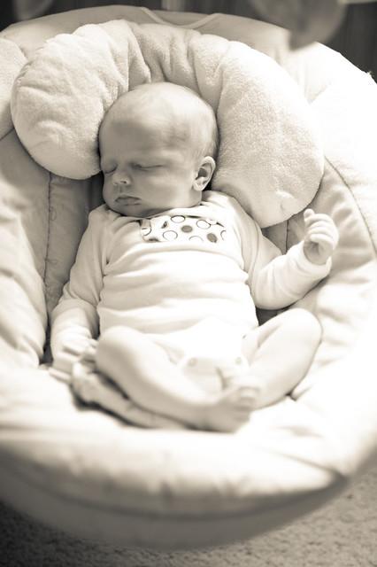 2 weeks old3 (1 of 1)