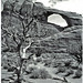 3rd Place - Black & White - Frank Zurey - Arches National Park