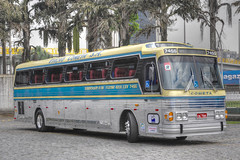 trolleybus(0.0), dennis dart(0.0), metropolitan area(1.0), vehicle(1.0), transport(1.0), mode of transport(1.0), public transport(1.0), tour bus service(1.0), flxible new look bus(1.0), land vehicle(1.0), bus(1.0),