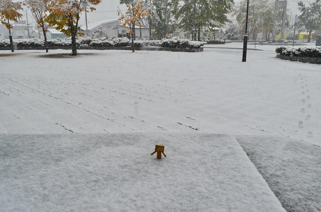 2013年初雪&初積雪 (3)