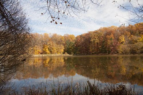 autumn canon fallfoliage silverspring wheaton brooksidegardens montgomerycounty wheatonregionalpark americaapost1~commenton2newrulesb