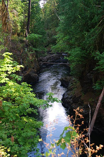 Stamp River, Stamp River Provincial Park, Port Alberni, Vancouver Island, British Columbia, Canada