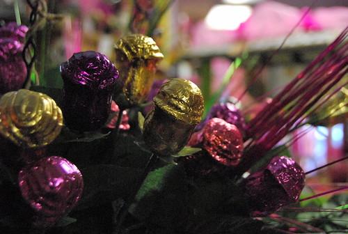 WPIR - chocolate roses-001