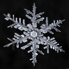 Snowflake: Sprawling Geometry