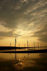 高美濕地,圖片作者:animalfarm1981,圖片來源:http://www.flickr.com/photos/animalfarm1981/7969800382/,本圖符合CC授權使用。