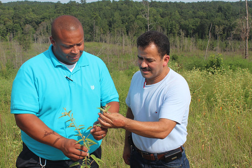 "NRCS Supervisory District Conservationist Kelvin Jackson worked with Variano ""Chino"" Suarez in Mississippi on improving forested lands with conservation programs. NRCS photo."