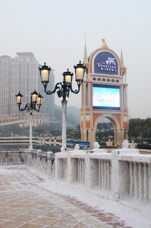 Macau Diaries_msdanicamae21