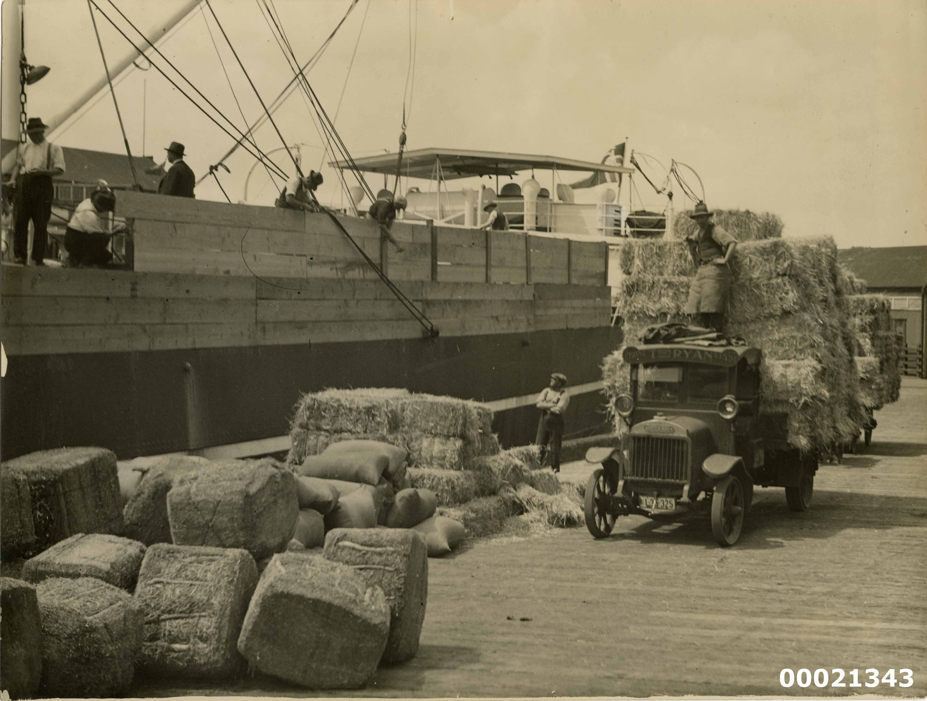 Loading bales of hay possibly on a Norwegian merchant vessel at Woolloomooloo Bay in Sydney