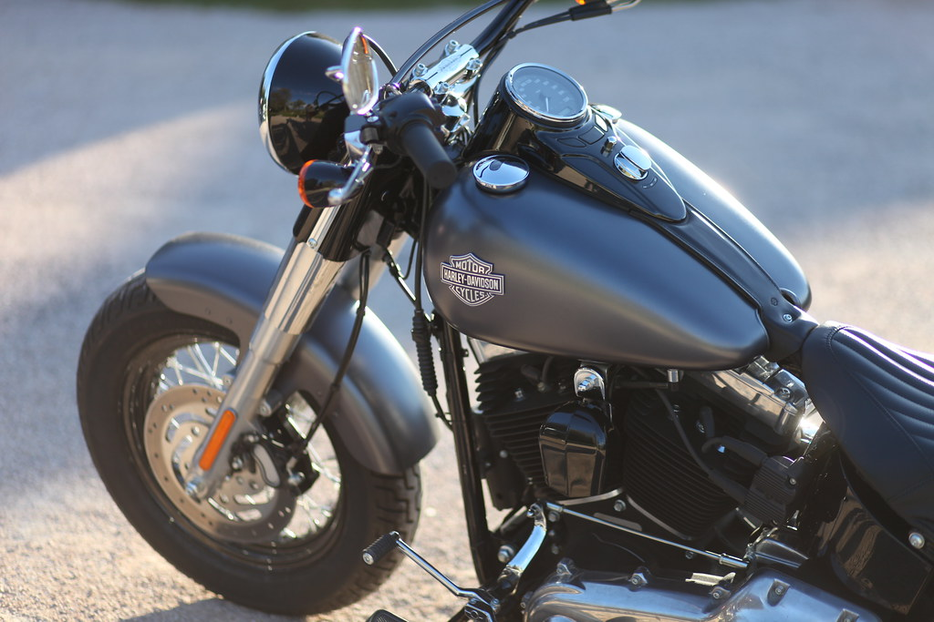 Softail Slim sous tous ses angles ! - Page 4 13959178949_3c842fa00a_b