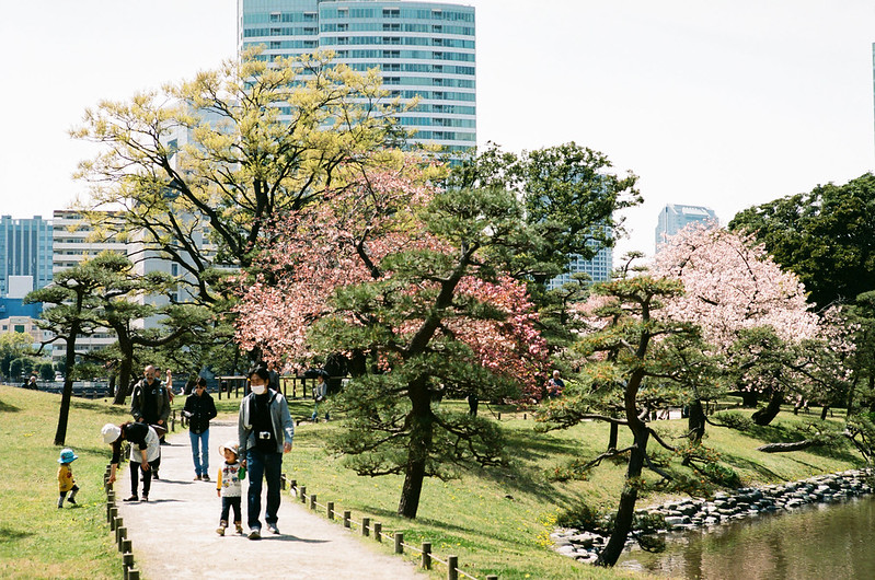clear day /Hama-rikyu Gardens