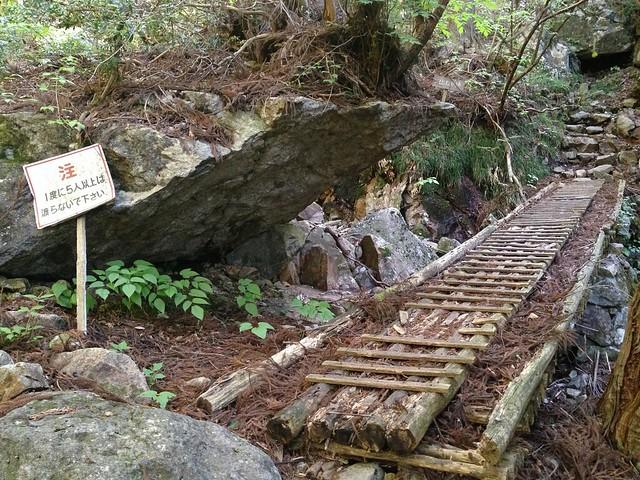 高賀山 登山道 木橋
