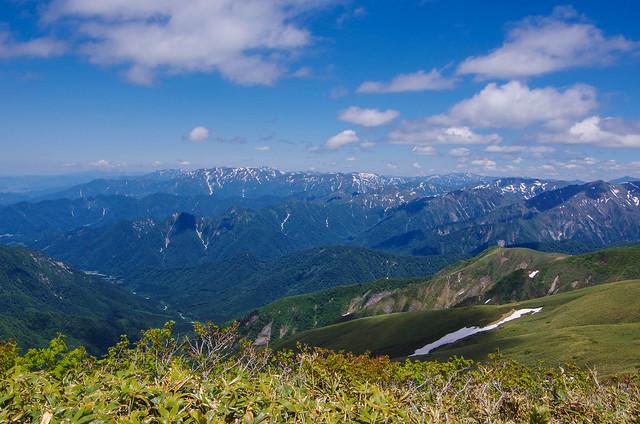 20150607-仙ノ倉山S-0079.jpg