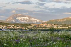 Midnightsun in Tromsø