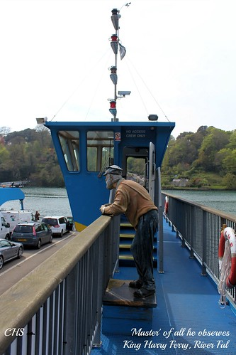 'Master' all all he observes.  King Harry Ferry by Stocker Images
