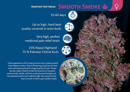 Smooth Smoke