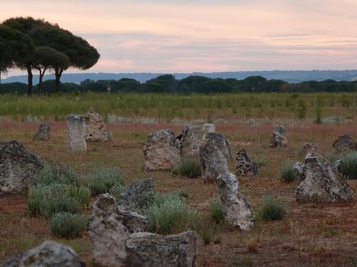 Foto de Pintia (Valladolid)