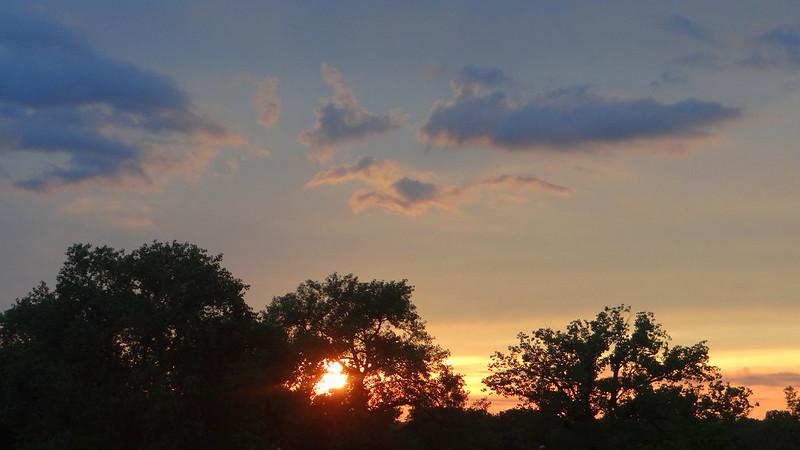 DSC01003 5 170613 Muny Sunset