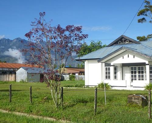Papou13-Wamena-Ville (91)1