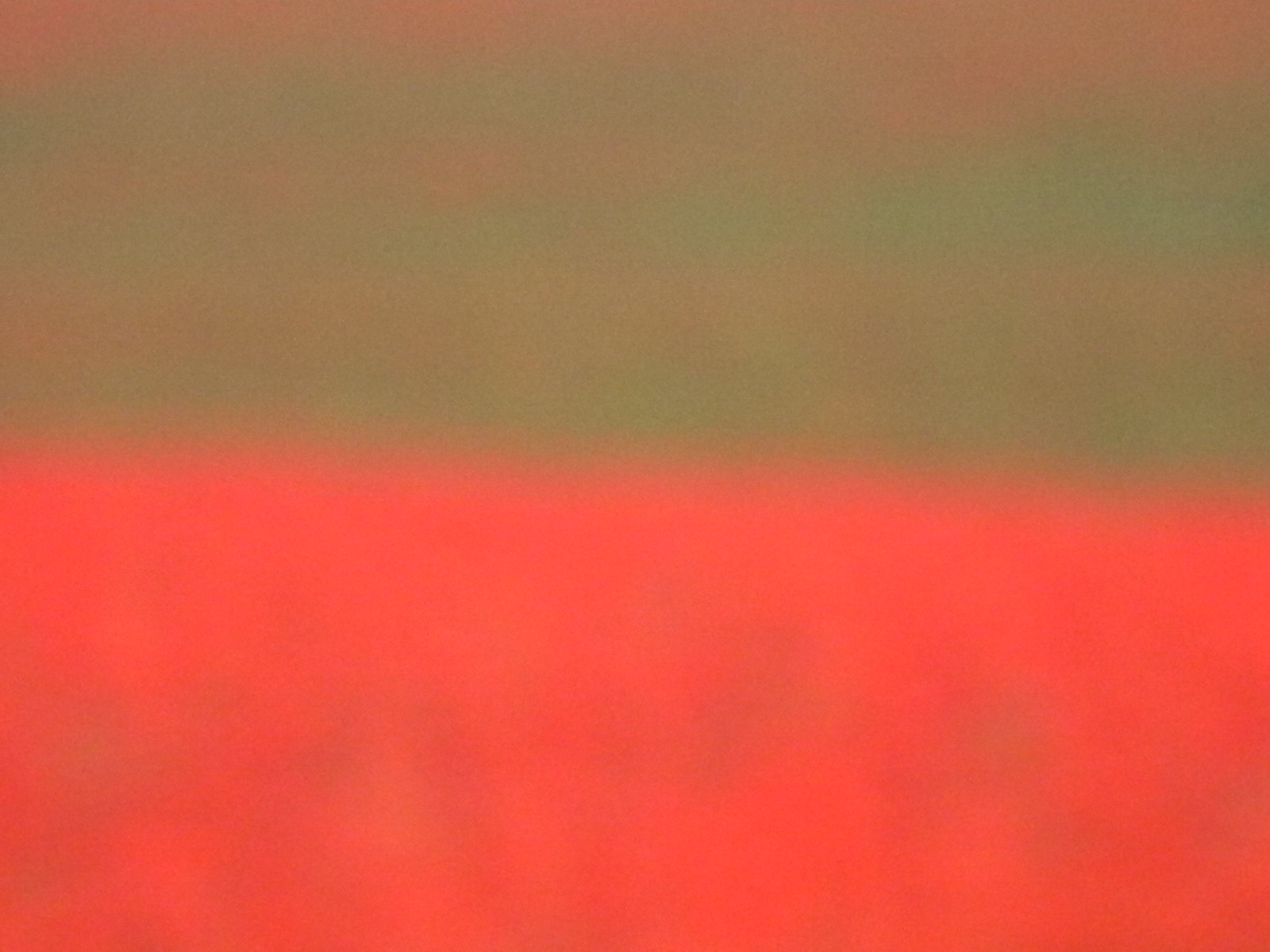 Poppy field near Falmer Rothko-style Hassocks to Brighton