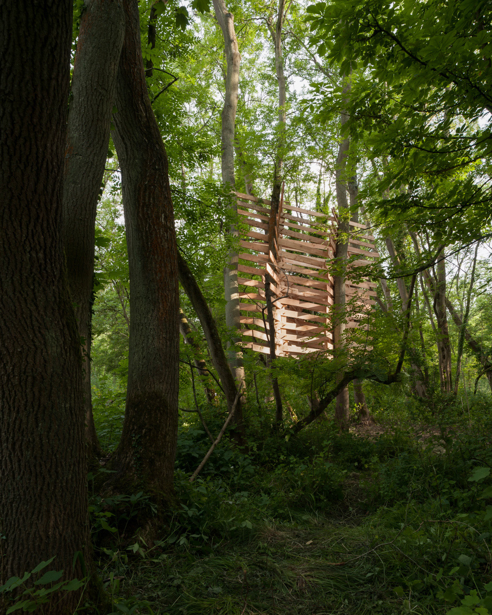 Studio in the woods 2013