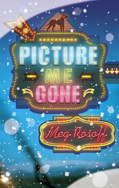 Meg Rosoff, Picture Me Gone