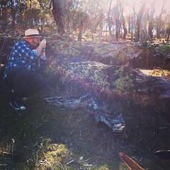 Carl photographing lichen. #canberra #mtainslie #walking