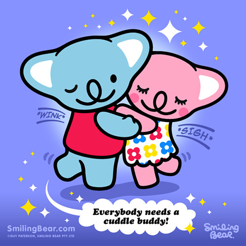 I Want To Cuddle With You Quotes: Everybody Needs A Koala Cuddle Buddy!