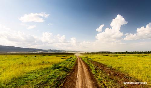 Kenia - Masai Mara 25