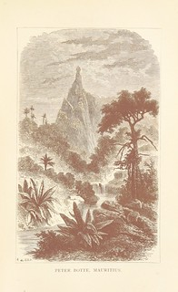 "Image taken from page 299 of 'Mountain Adventures in the various countries of the world. Selected from the narratives of celebrated travellers (... founded on a compilation made by Z. and M., and published under the title of ""Les Ascensions célèbre"