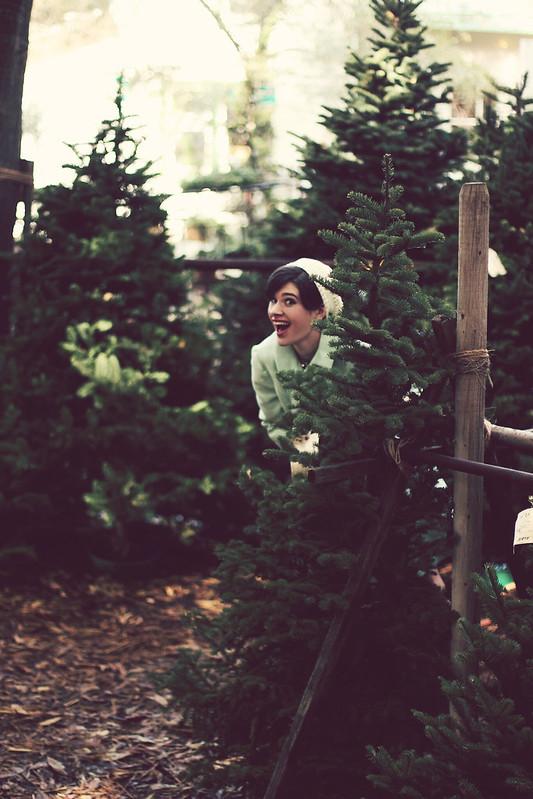treefarm 080