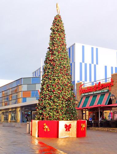 uk decorations tree wales buildings happy town carmarthenshire december christmastree gb townscape merrychristmas stcatherines happychristmas carmarthen merrychristmaseveryone festiveseason 2013 stcatherineswalk minoltakid theminoltakid