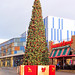 The christmas tree at St Catherine's Walk Carmarthen 2013 Happy Christmas everyone